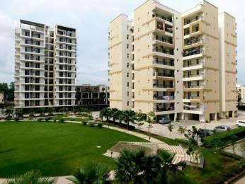 1650 sqft, 3 bhk Apartment in APS Highland Park Bhabat, Zirakpur at Rs. 53.5000 Lacs