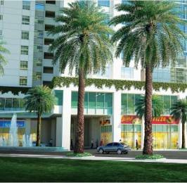 1790 sqft, 3 bhk Apartment in Central Park Mikasa Plots Sector 33 Sohna, Gurgaon at Rs. 81.0000 Lacs