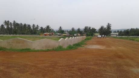 1800 sqft, Plot in Builder raghuram avenue Achutapuram, Visakhapatnam at Rs. 14.0000 Lacs