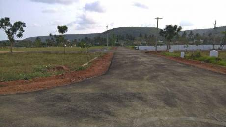 2403 sqft, Plot in Builder Project Boyapalem, Visakhapatnam at Rs. 41.3850 Lacs