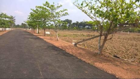 1800 sqft, Plot in Builder Project Sarika Village Road, Visakhapatnam at Rs. 13.6000 Lacs