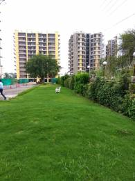 1350 sqft, 2 bhk Apartment in Trishla City Bhabat, Zirakpur at Rs. 42.3500 Lacs