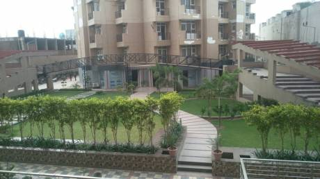 1842 sqft, 3 bhk Apartment in Mona Greens VIP Rd, Zirakpur at Rs. 53.5000 Lacs