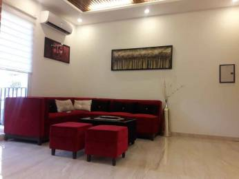1673 sqft, 3 bhk Apartment in Trishla City Bhabat, Zirakpur at Rs. 53.5000 Lacs