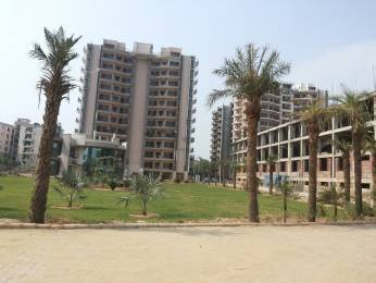 1800 sqft, 3 bhk Apartment in Fortune Fortune Victoria Heights Peer Muchalla, Zirakpur at Rs. 52.5000 Lacs