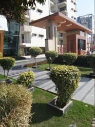 1816 sqft, 3 bhk Apartment in New Generation Real Estates Maple Apartments Dhakoli, Zirakpur at Rs. 51.6500 Lacs