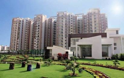 1910 sqft, 3 bhk Apartment in Motia Royal Citi Apartments Gazipur, Zirakpur at Rs. 65.3500 Lacs