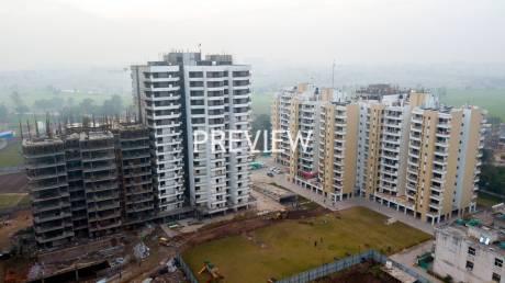 1827 sqft, 3 bhk Apartment in Golden Apartments Dhakoli, Zirakpur at Rs. 58.1500 Lacs