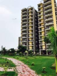 1250 sqft, 2 bhk Apartment in Trishla City Bhabat, Zirakpur at Rs. 43.5000 Lacs