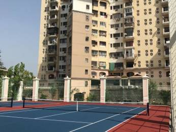 1100 sqft, 2 bhk Apartment in Cidco NRI Complex Phase 2 Seawoods, Mumbai at Rs. 1.8500 Cr