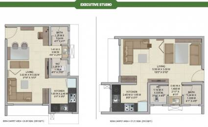 249 sqft, 1 bhk Apartment in Builder wadhawa wise City Panvel, Mumbai at Rs. 24.7500 Lacs