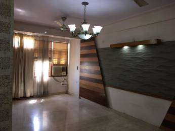 1185 sqft, 3 bhk Apartment in Anukampa Prestige Apartments Malviya Nagar, Jaipur at Rs. 20000