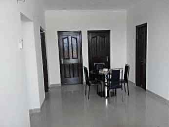 700 sqft, 1 bhk Apartment in SBP City Of Dreams Sector 116 Mohali, Mohali at Rs. 17.9000 Lacs