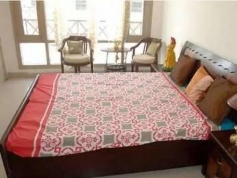 850 sqft, 2 bhk BuilderFloor in Builder beautifull house Sector 17, Panchkula at Rs. 16500