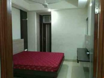 1250 sqft, 3 bhk BuilderFloor in Builder beautifull house Sector 2, Panchkula at Rs. 22000
