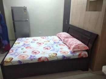 650 sqft, 1 bhk BuilderFloor in Builder GOOD HOUSE Sector 18, Panchkula at Rs. 12500
