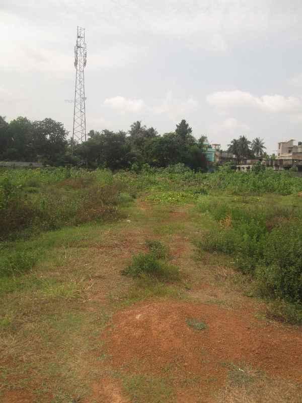 2178 sq ft 0BHK Plots Property By Swarg Developers In sai krushana, Balasore