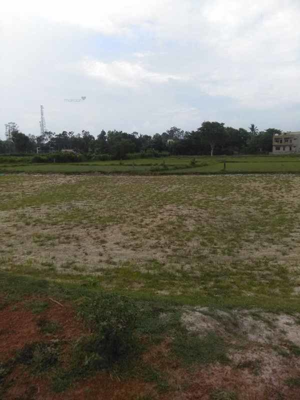 2178 sq ft 0BHK Plots Property By Swarg Developers In Project, Chandmari Road