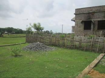 2178 sqft, Plot in Builder sai sargam Balasore, Balasore at Rs. 10.0000 Lacs