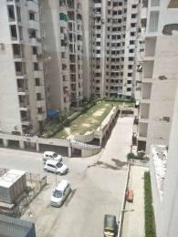 1650 sqft, 3 bhk Apartment in SRS Royal Hills Sector 87, Faridabad at Rs. 48.7500 Lacs
