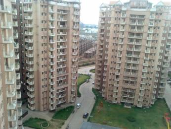 1304 sqft, 2 bhk Apartment in SRS SRS Residency Sector 88, Faridabad at Rs. 39.5000 Lacs