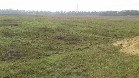 3000 sqft, Plot in Builder HIGHWAY NAGAR Pahala, Bhubaneswar at Rs. 41.2000 Lacs