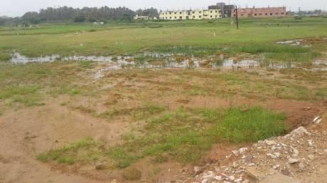 2000 sqft, Plot in Builder pvt plot Kateni, Bhubaneswar at Rs. 13.2000 Lacs