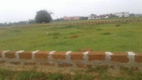 2120 sqft, Plot in Builder PVT PLOT Andharua, Bhubaneswar at Rs. 13.2000 Lacs