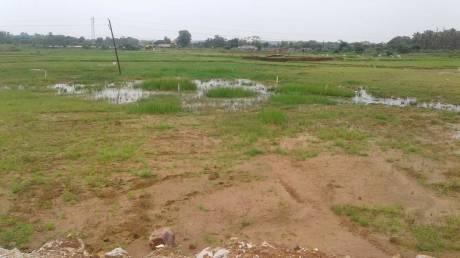 2000 sqft, Plot in Builder arunika vihar Andharua, Bhubaneswar at Rs. 11.8000 Lacs