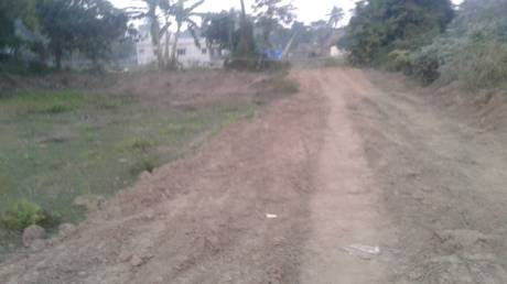 2165 sqft, Plot in Builder HIWAY NAGAR Phulnakhara, Cuttack at Rs. 21.1000 Lacs