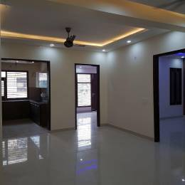 1000 sqft, 2 bhk Apartment in Builder Anupam Enclave Saket, Delhi at Rs. 20000