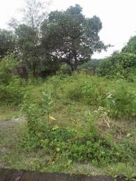 1500 sqft, Plot in Builder vikramgad palghar Palghar, Mumbai at Rs. 7.5000 Lacs