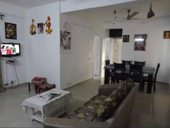 1550 sqft, 3 bhk Apartment in Tulip Petals Sector 89, Gurgaon at Rs. 69.0000 Lacs
