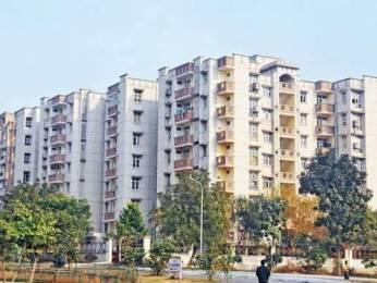 1200 sqft, 2 bhk Apartment in Builder Project Sector 12 Dwarka, Delhi at Rs. 92.0000 Lacs