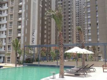 673 sqft, 2 bhk Apartment in Lodha Amara Tower 1 To 5 And 7 To 19 Thane West, Mumbai at Rs. 18000