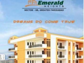 1260 sqft, 2 bhk Apartment in Builder Project Sector 88 Faridabad, Faridabad at Rs. 35.9900 Lacs