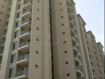 1135 sqft, 2 bhk Apartment in Builder Project Sector 87 Faridabad, Faridabad at Rs. 38.2100 Lacs
