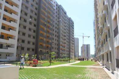 1012 sqft, 2 bhk Apartment in Sobha Rain Forest at Dream Acres Varthur, Bangalore at Rs. 24000