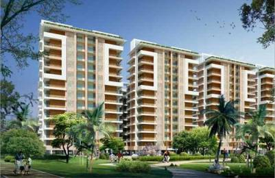 2180 sqft, 3 bhk Apartment in Bee Gee Palm Village Sector 126 Mohali, Mohali at Rs. 59.0000 Lacs