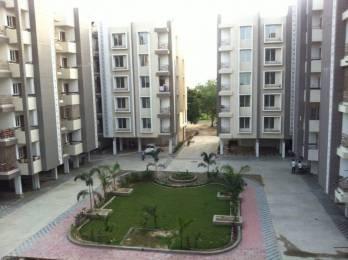 1650 sqft, 3 bhk Apartment in Builder Dharam Vatika Hathijan, Ahmedabad at Rs. 42.5000 Lacs