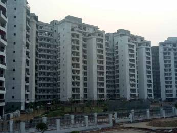 1310 sqft, 2 bhk Apartment in Anant Maceo Sector 91, Gurgaon at Rs. 56.0000 Lacs