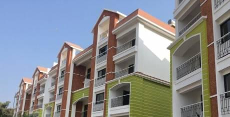 926 sqft, 2 bhk Apartment in Builder Devgreepor Porvorim, Goa at Rs. 66.0000 Lacs