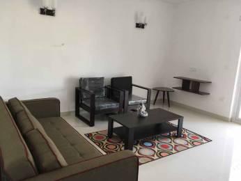 645.834 sqft, 1 bhk Apartment in Builder Anjuna Apt Anjuna, Goa at Rs. 53.5000 Lacs
