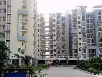 1600 sqft, 3 bhk Apartment in Omaxe Heights Sector 86, Faridabad at Rs. 80.0000 Lacs