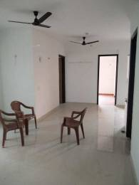 1825 sqft, 4 bhk Apartment in Saya Zion Sector 4 Noida Extension, Greater Noida at Rs. 15000