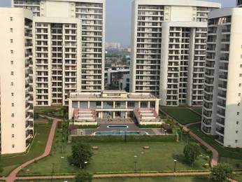 1785 sqft, 3 bhk Apartment in Chintels Paradiso Sector 109, Gurgaon at Rs. 30000