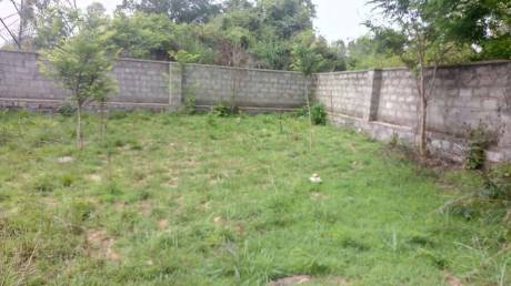 13356 sqft, Plot in Builder Project Bannerghatta, Bangalore at Rs. 1.0500 Cr