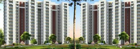 1545 sqft, 3 bhk Apartment in Builder Project Sector 33 Sohna, Gurgaon at Rs. 1.1200 Cr