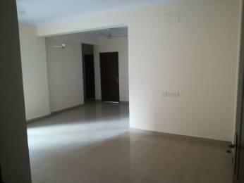 1505 sqft, 3 bhk Apartment in Saviour Saviour Park Mohan Nagar, Ghaziabad at Rs. 14000