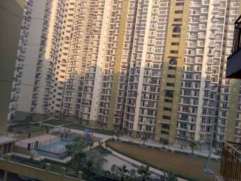 1380 sqft, 3 bhk Apartment in Builder paramount emotions Noida Extn, Noida at Rs. 11000